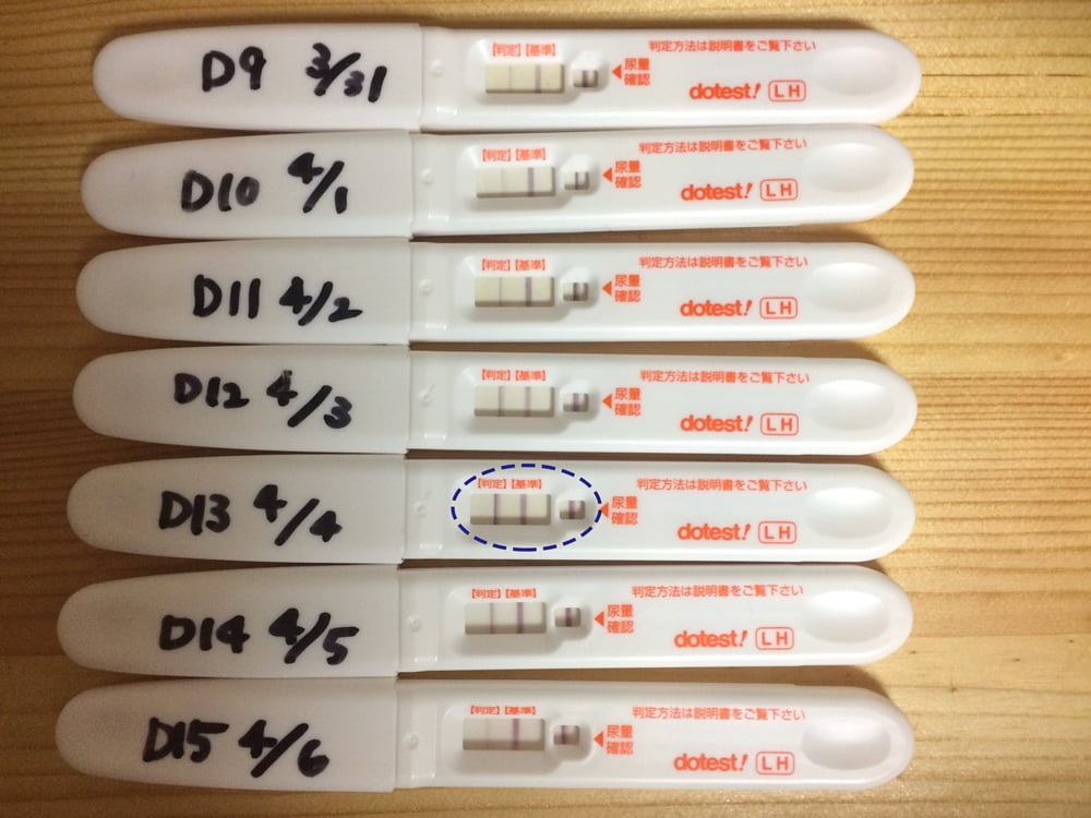 排卵検査薬 陽性 翌日 排卵検査薬で朝陽性だが夜陰性なのはなぜ?正しいのはどっち?タイミ...