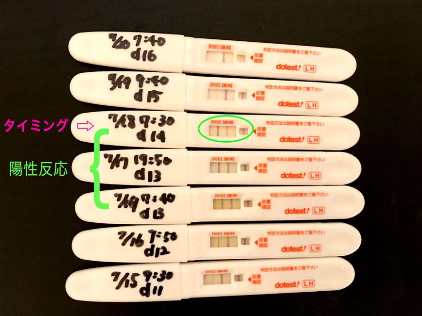 排卵検査薬 陽性 翌日 排卵検査薬で陽性!妊娠しやすいタイミングは?いつから使えばいい?